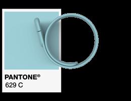 Referenze Pantone ® Braccialetto USB